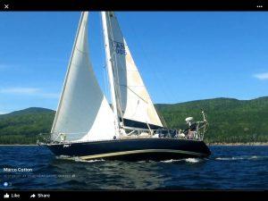 Jazz on sail.jpg